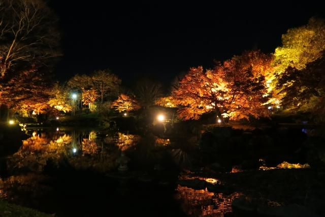 桜山公園・桜山森林公園
