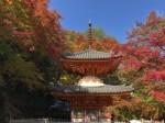 牛滝山・大威徳寺