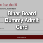 Bihar Board dummy Admit Card