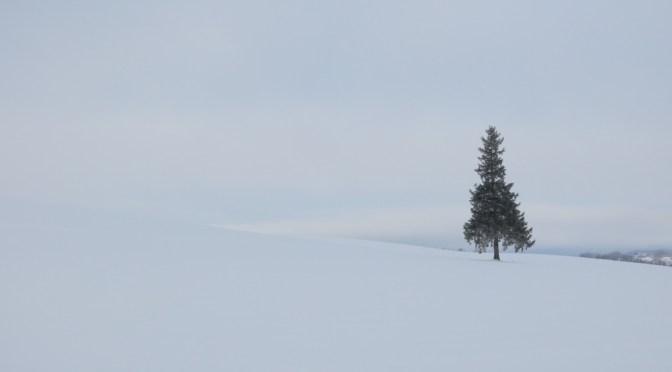 Trip to Hokkaido in 2017 winter – Part 5, Asahikawa to Takikawa via Biei