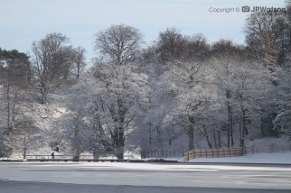 Studley Royal Lake In The Snow