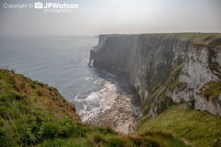 View From Bempton Cliffs