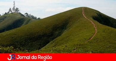 Mursa. (Foto: Divulgação)