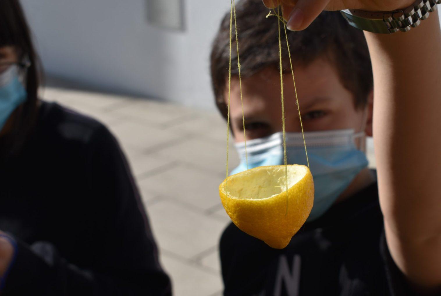 Comedor construído a partir de casca de limão
