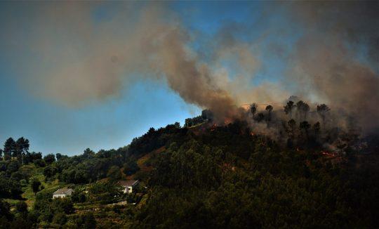 A progressão das chamas em zonas de mato e eucalipto , ameaçam habitações.