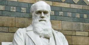 statue-charles-darwin_39976_1