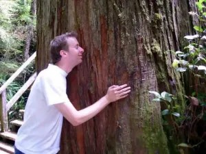 tree-hugging-hippies