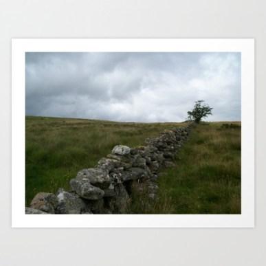 landscape, photo, photography, moors, moorland, farm wall, dry stone wall, isolation,