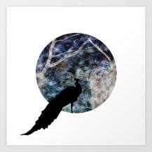 peacock, shadow, silhouette, bird, otherworldly, graphic design, photo manipulation