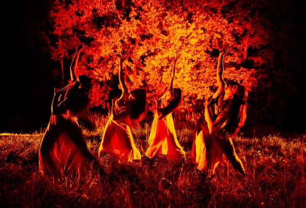 Gardzienice11_red_tree