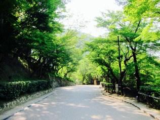Wide pathways