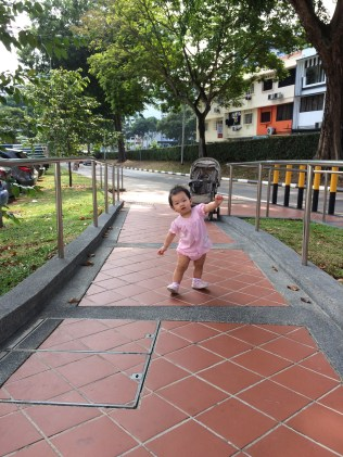 Dolly walking