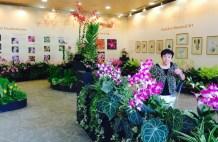 Mom at SBG orchid display