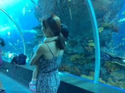 Leaving the SEA Aquarium