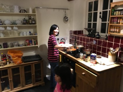 Mum cooking dinner