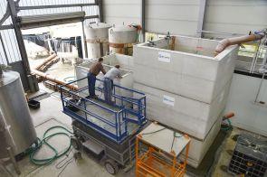 Prüfaufbau: Die Drosseln werden im Labor unter realitätsnahen, reproduzierbaren Bedingungen getestet.