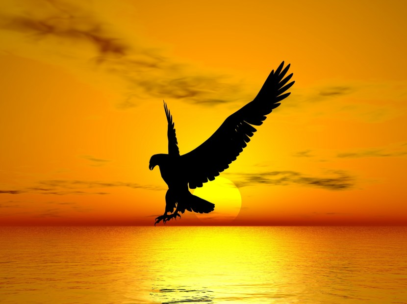 Déclarations de souveraineté spirituelle et des Libertés Humaines : La liberté est un droit Divin