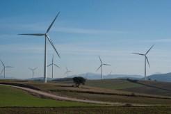 Windpark auf der Strecke