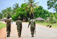 News24.com   Several killed, gas works halted as militants seize north Mozambique town