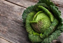 Diabetes Diet: डायबिटीज रोगियों के लिए अद्भुत हैं ये 5 पावर फूड्स, इनके पोषक तत्व शुगर लेवल को रखते हैं कंट्रोल!