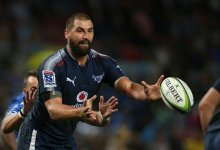 News24.com | How Cheetahs plan to hit jackpot with Jacques Potgieter: Simply make him 'do damage'