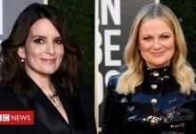 Golden Globe Awards 2021: Digital ceremony will get below means