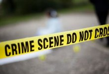 News24.com   Cops recover bag with guns, ammo at picnic spot in the Western Cape
