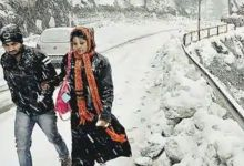 वेस्टर्न डिस्टरबेंस से मौसम बदला:हिमाचल और कश्मीर में बर्फ गिरी, गुड़गांव में बिजली गिरने से पेड़ के नीचे खड़े 4 लोग झुलसे; MP में भी बारिश