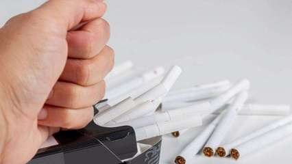 How tobacco consumption affects fertility?