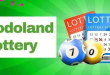 Bodoland Lottery Result Today 27.7.2021: Bodoland Lottery Result Live