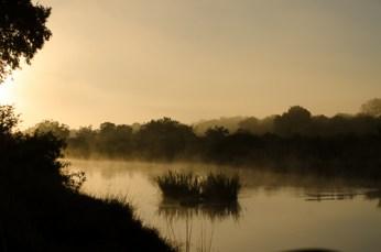 Sunrise on the Sand River