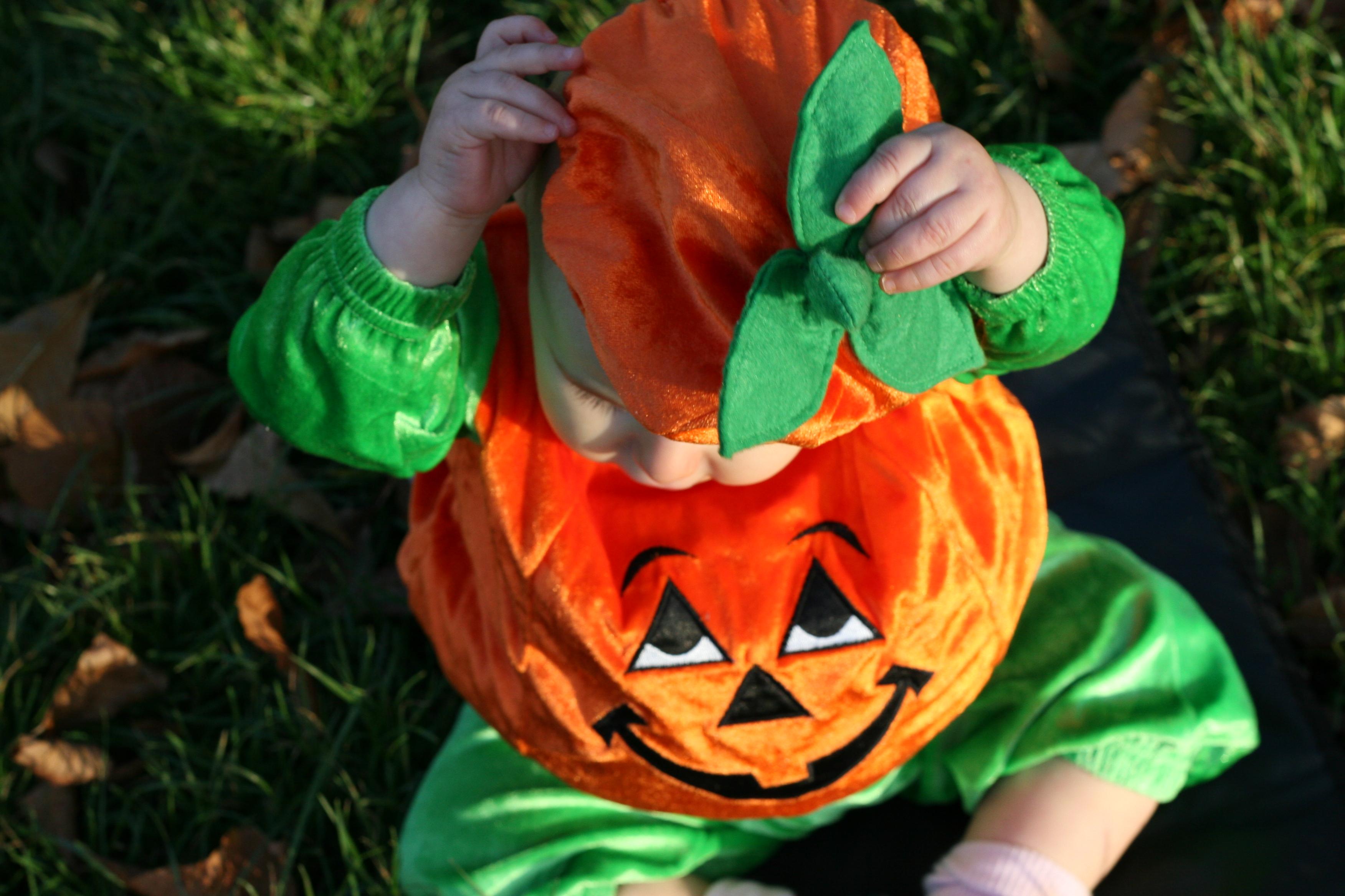 A little pumpkin