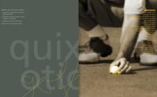 Quixotic Golf, brand ID guide (spread)