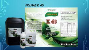 Folhas K40