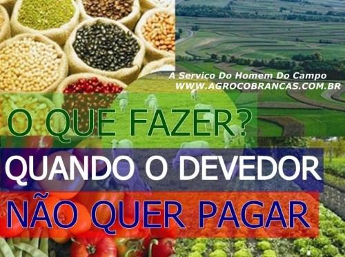 2f800407-ddf5-49c5-9c64-3de4aa08ff01_Agronegocio-2