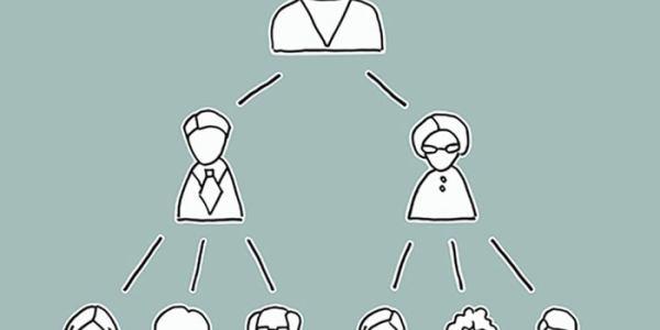 Multinivel Cómo funciona
