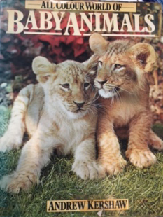 Baby Animals - Andrew Kershaw
