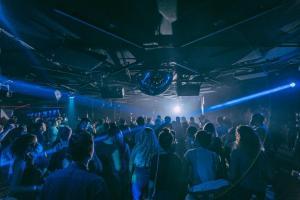 crowds in a music venue