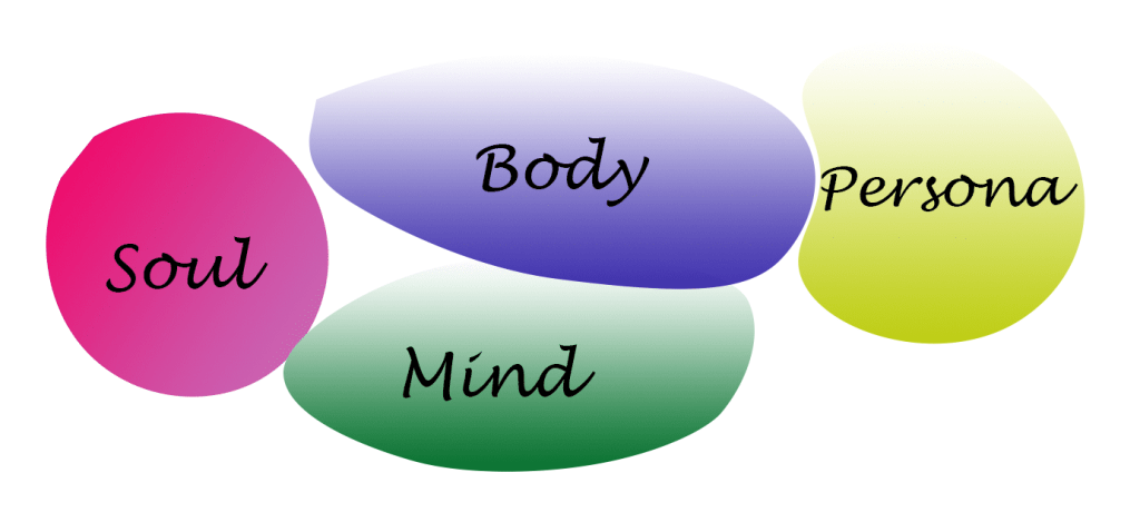 Human life has four dimensions: Soul, Mind, Body, and Persona.