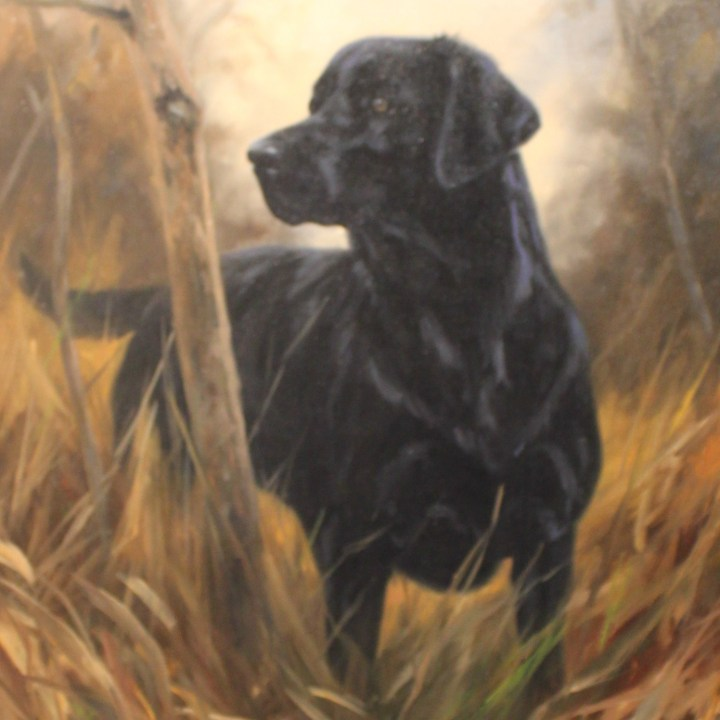 SOLD: Study of a black Labrador – John Trickett