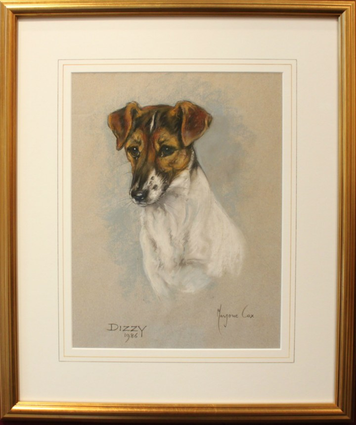 Study of a Jack Russell- Dizzy – Marjorie Cox
