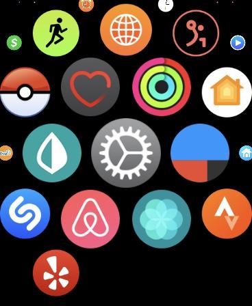 Settings App on Apple Watch