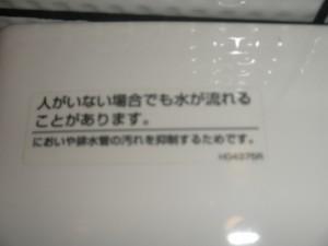 P5181580
