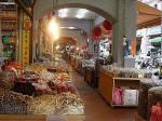 動物のための漢方・薬草療法=台湾ツアー_国際中獣医アカデミー日本校