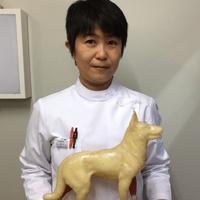 JTCVM国際中獣医学院日本校認定中獣医鍼灸師|a20160105-直井麻維子