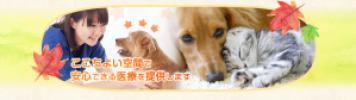 中西先生新規開院(2018.05.24)|JTCVM国際中獣医学院日本校