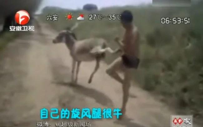 un chinois se bat pieds nus avec un âne
