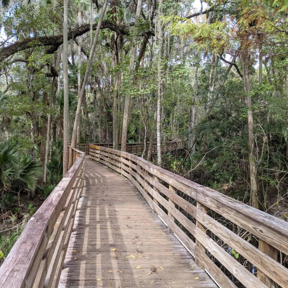 Boardwalk in Blue Spring State Park