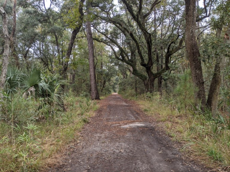 Skidaway Island State Park trail