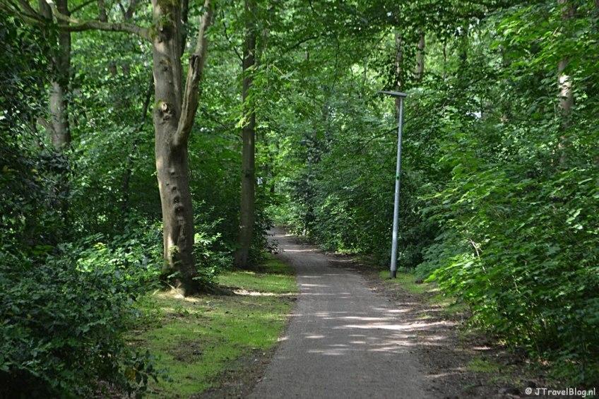 Bospad in Hilversum tijdens de 6e etappe van het Westerborkpad